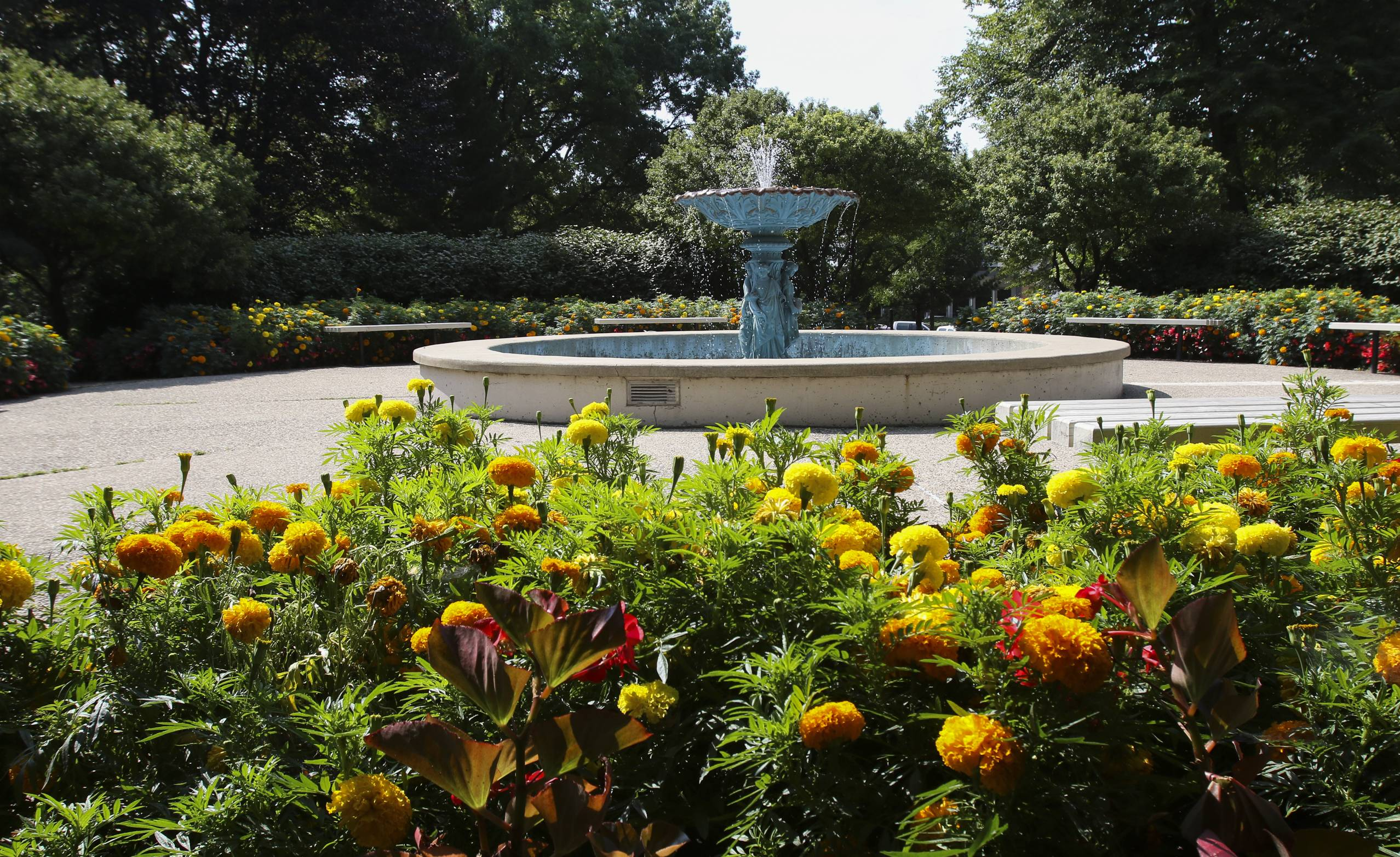 A historic fountain in Adams Park once stood outside the home of a distant relative of President John Quincy Adams.