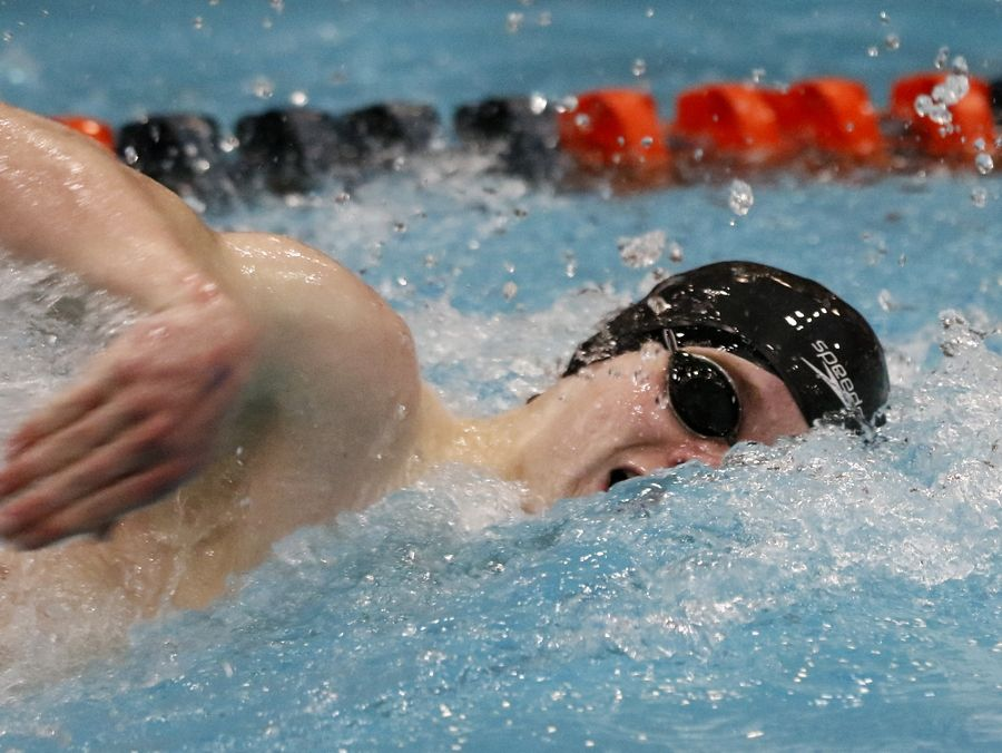 Topher Stensby of Stevenson swims the 100-yard freestyle Friday during the boys swimming state meet prelims at Evanston.