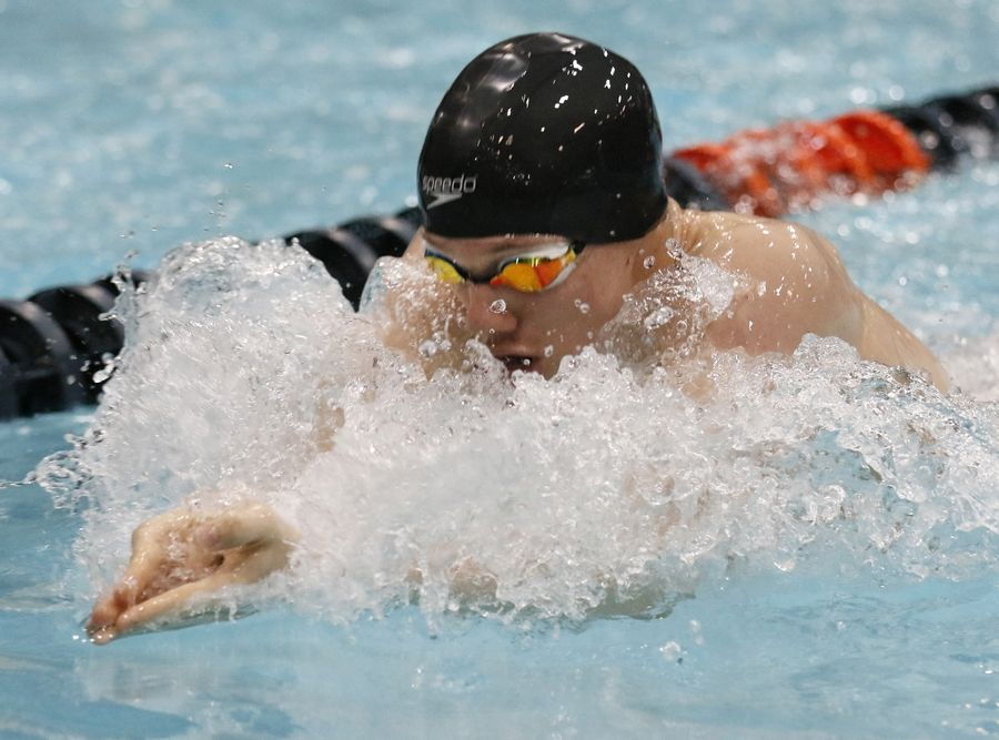 Kyle Falkstrom of Carmel competes in the 200-yard individual medley Friday during the boys swimming state meet prelims at Evanston.