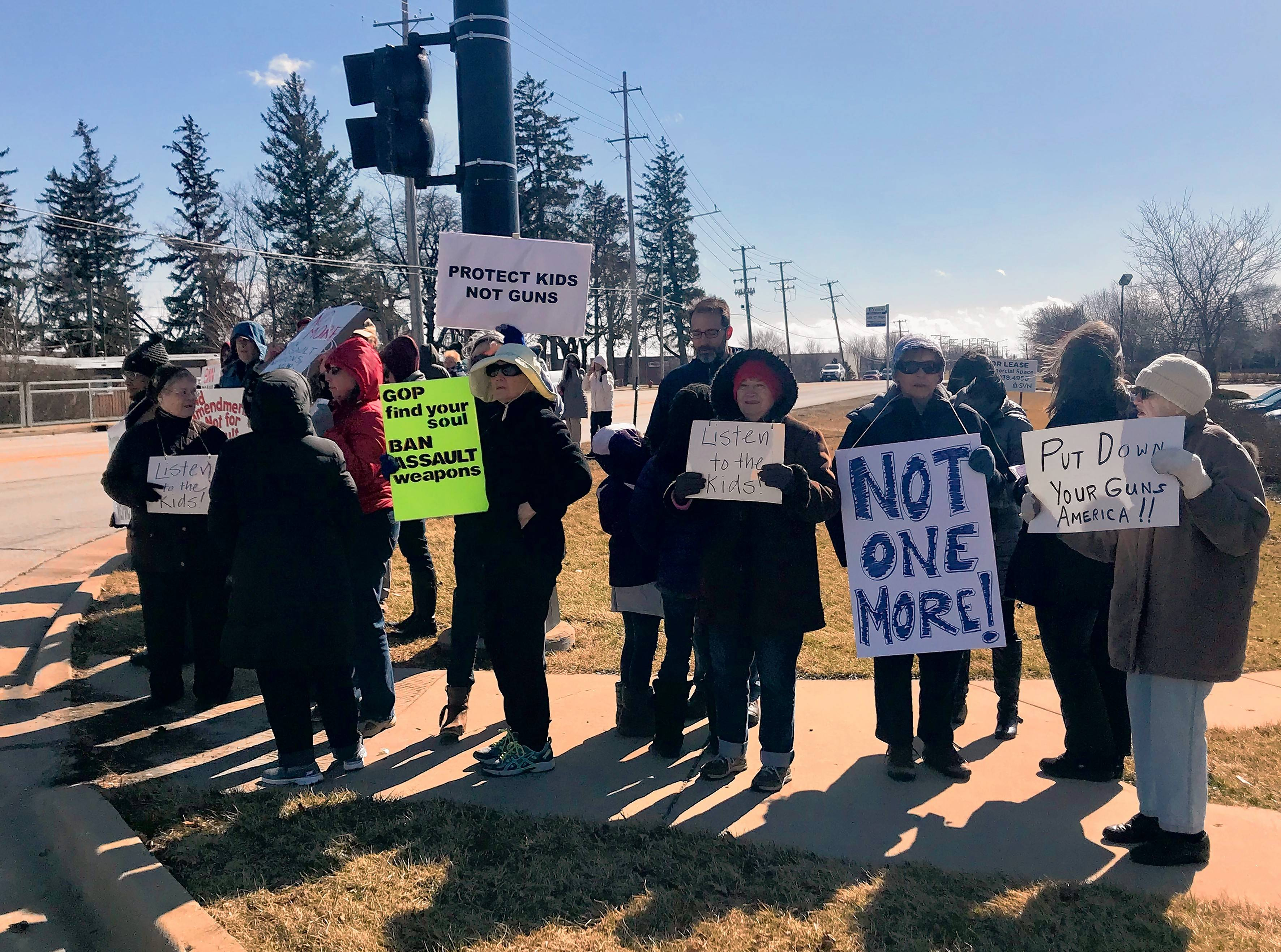 Dozens of protesters gather Sunday at McLean Boulevard and College Green Drive in Elgin to support stricter gun control measures.