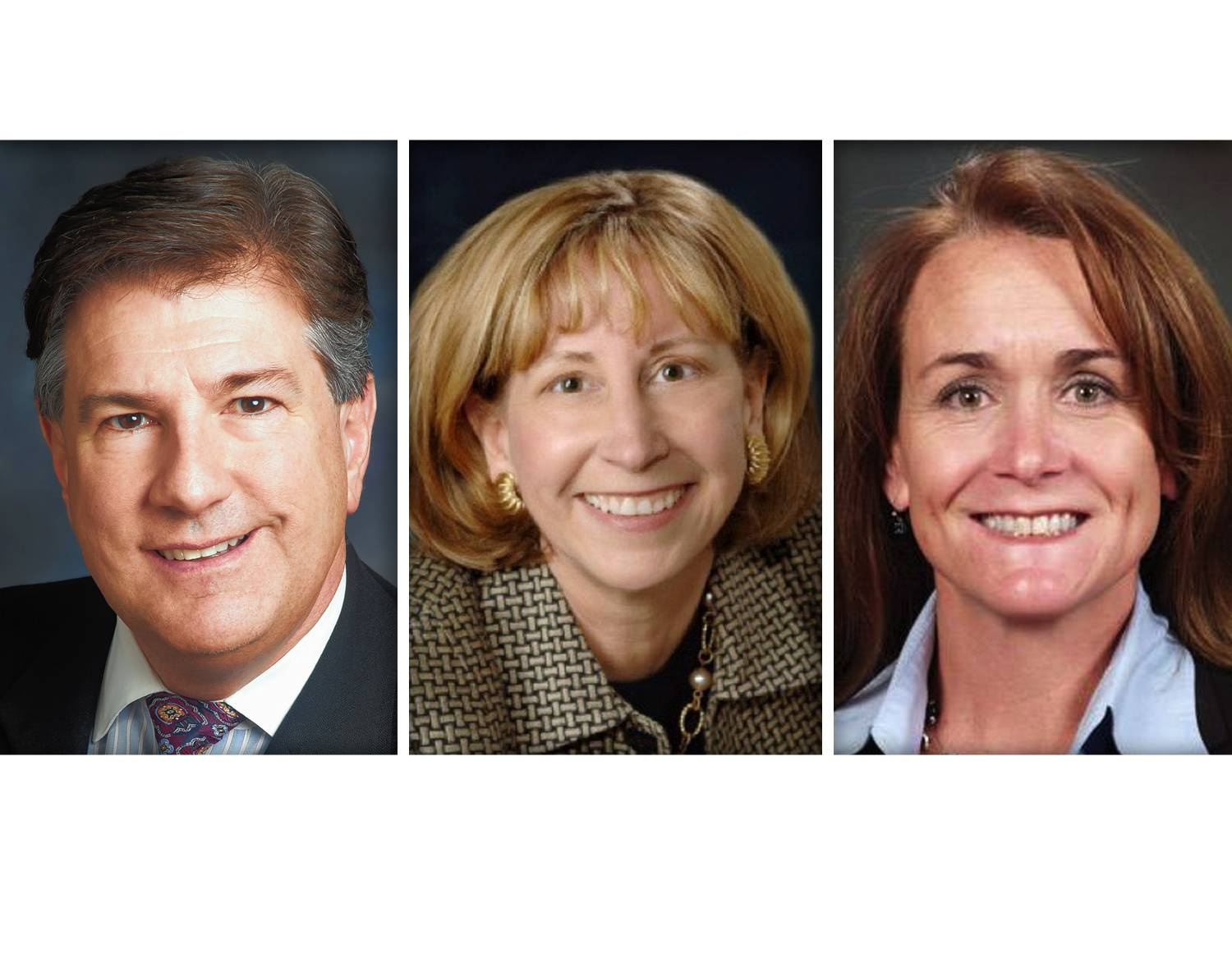 Michael Danforth, Eleanor Sweet McDonnell and Linda Starkey are Republican candidates for the Lake County Board's 17th District seat.