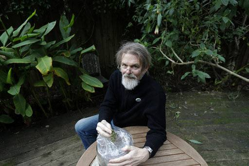 "FILE - In this Dec. 22, 2017, file photo, Dale Gieringer, of NORML (National Organization for the Reform of Marijuana Laws), poses at his house in Berkeley, Calif. Some states that have legalized marijuana are considering providing so-called sanctuary status for licensed marijuana businesses, hoping to protect them from a shift in federal enforcement policy. Gieringer said California has a rotten history with the feds on marijuana enforcement. ""I don't think the feds care too much about marijuana in Alaska, to tell you the truth,"" he said. ""But marijuana has been a big industry in this state, so we're sort of on the front lines."""