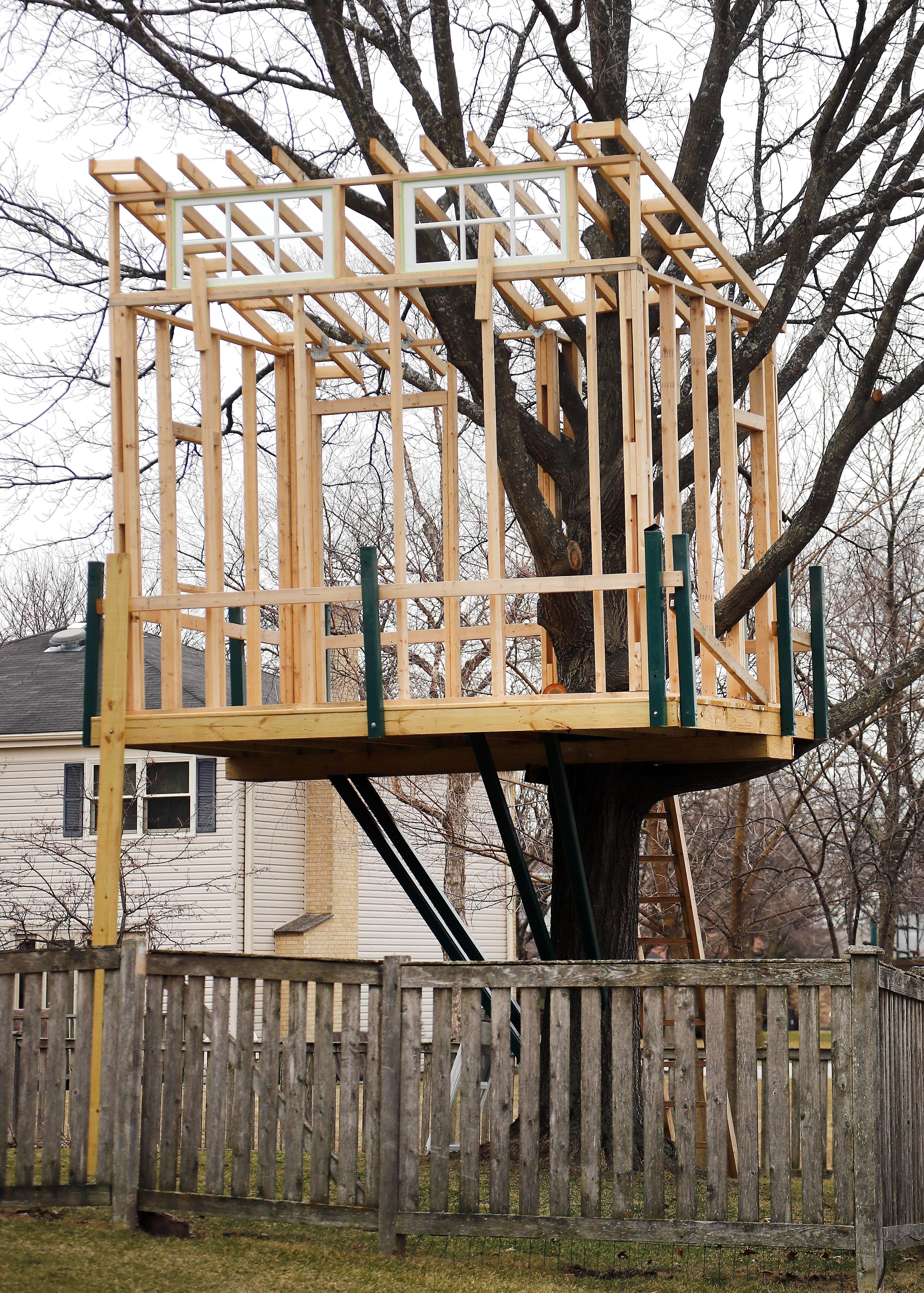 Palatine resident Matthew Ligda has 30 days to dismantle this partially finished treehouse in his backyard.
