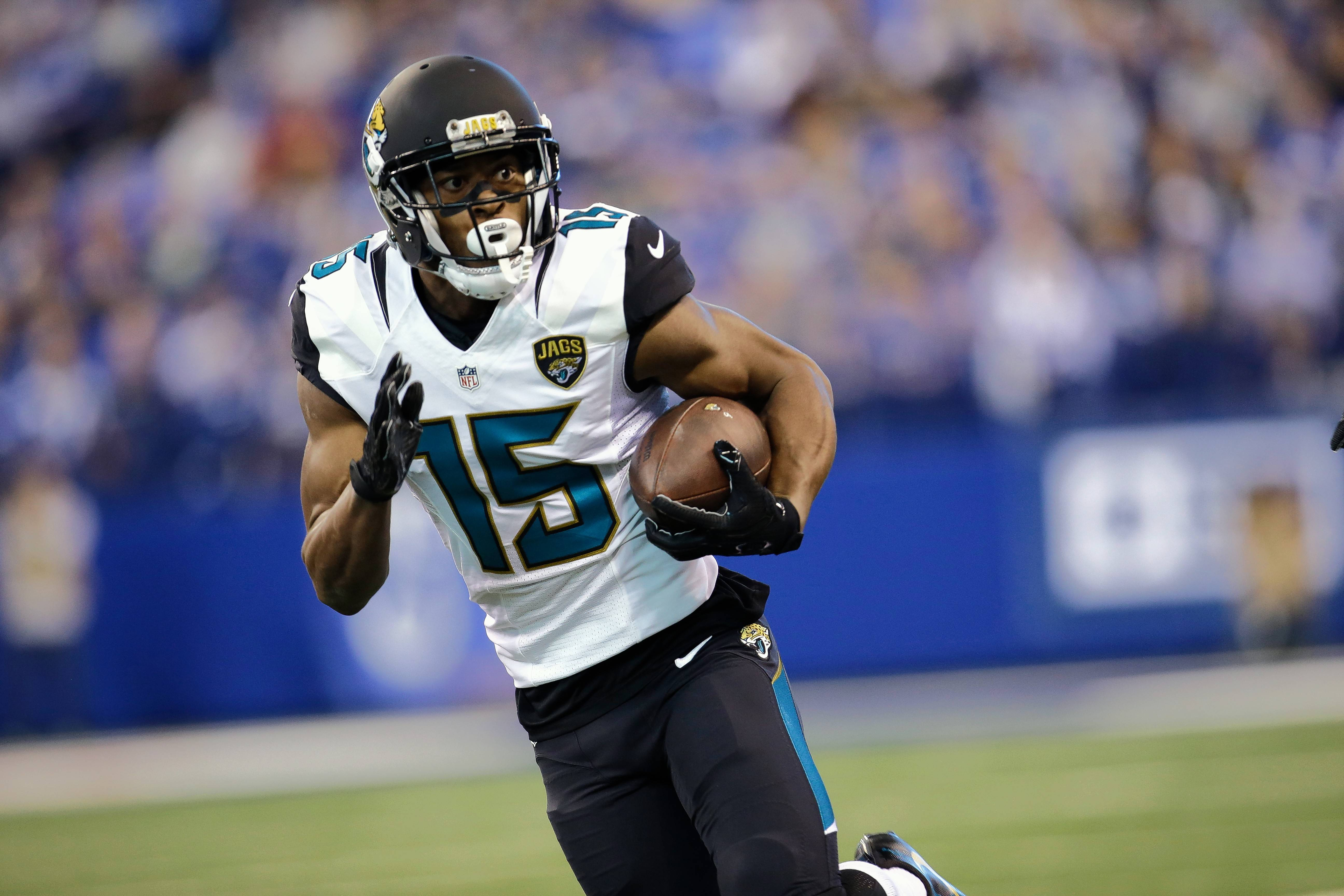 Although he missed most of last season to a knee injury, Jacksonville Jaguars wide receiver Allen Robinson is a likely free-agent target for the Chicago Bears.