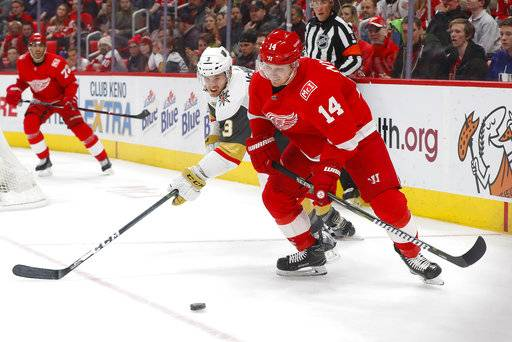 Vegas Golden Knights defenseman Brayden McNabb (3) and Detroit Red Wings right wing Gustav Nyquist (14) compete for the puck during the second period of an NHL hockey game Thursday, March 8, 2018, in Detroit.