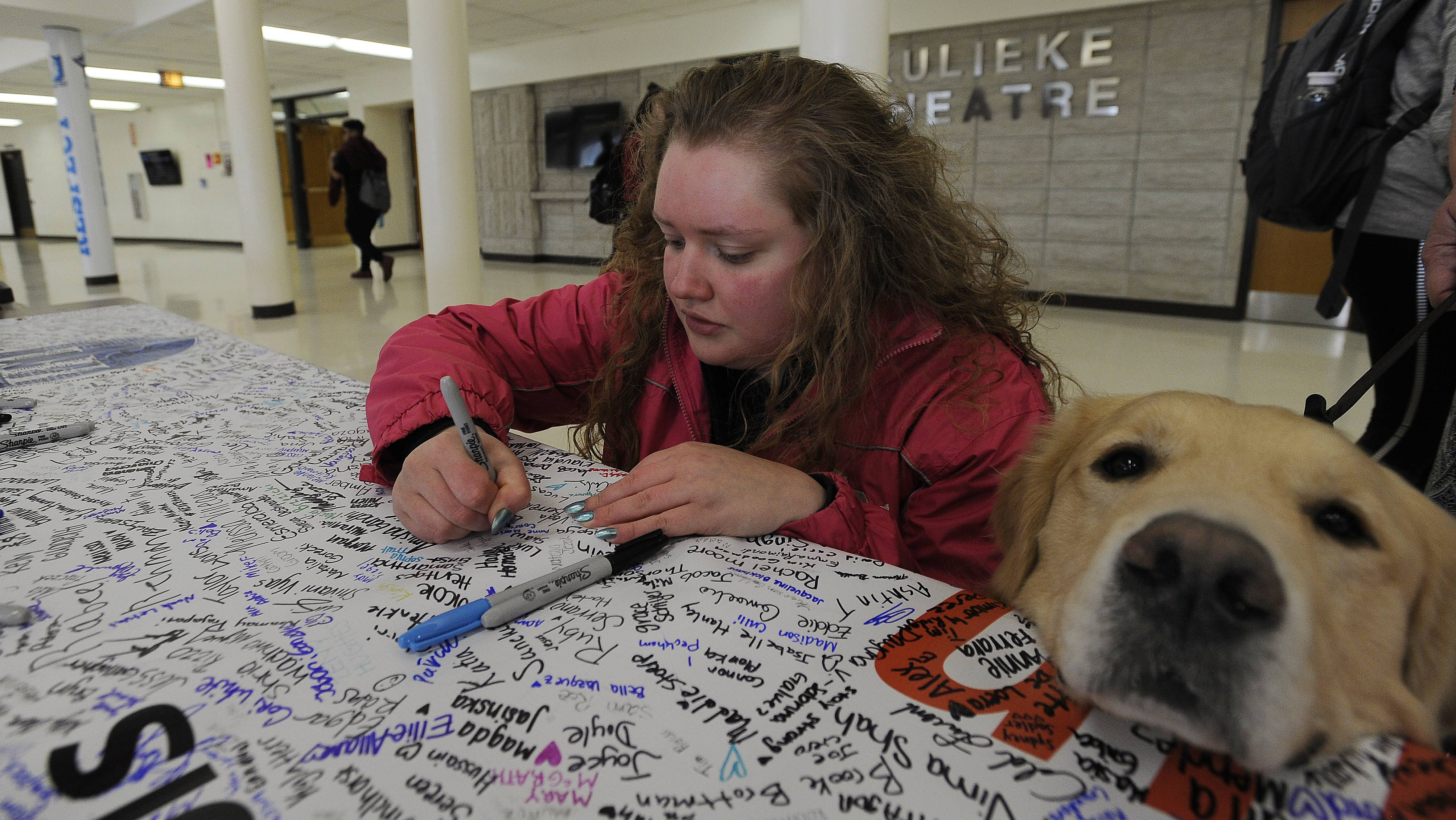 Anne Marie Conroy, 18, a senior at Prospect High School, signs a banner for the students of Parkland, Florida, alongside the school's therapy dog, Ringo. The banner has some 20,000 signatures.