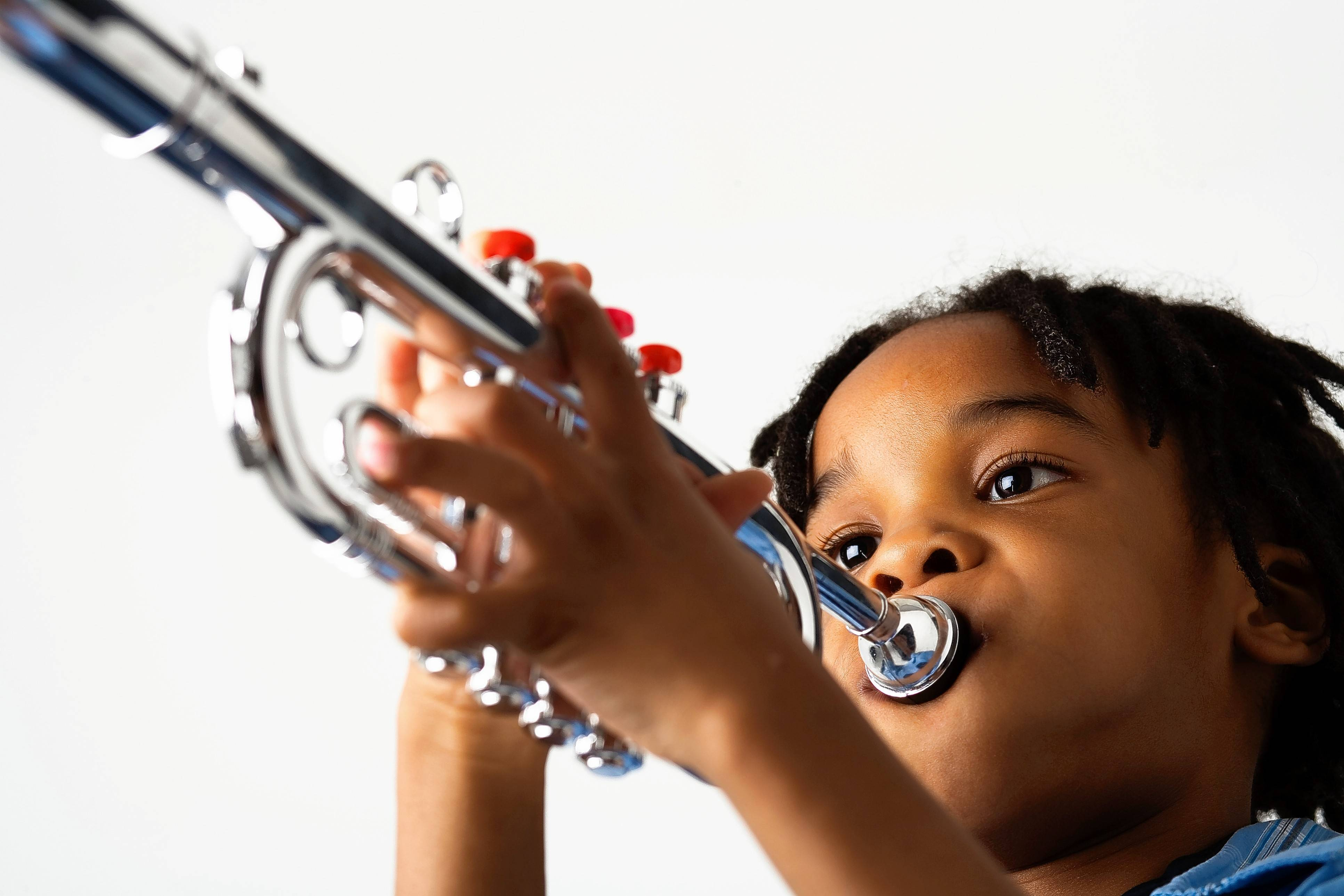 The Community Unit District 300 Foundation for Educational Excellence is seeking donations of gently used musical instruments for students in the district who are interested in learning to play with their school's band or orchestra.