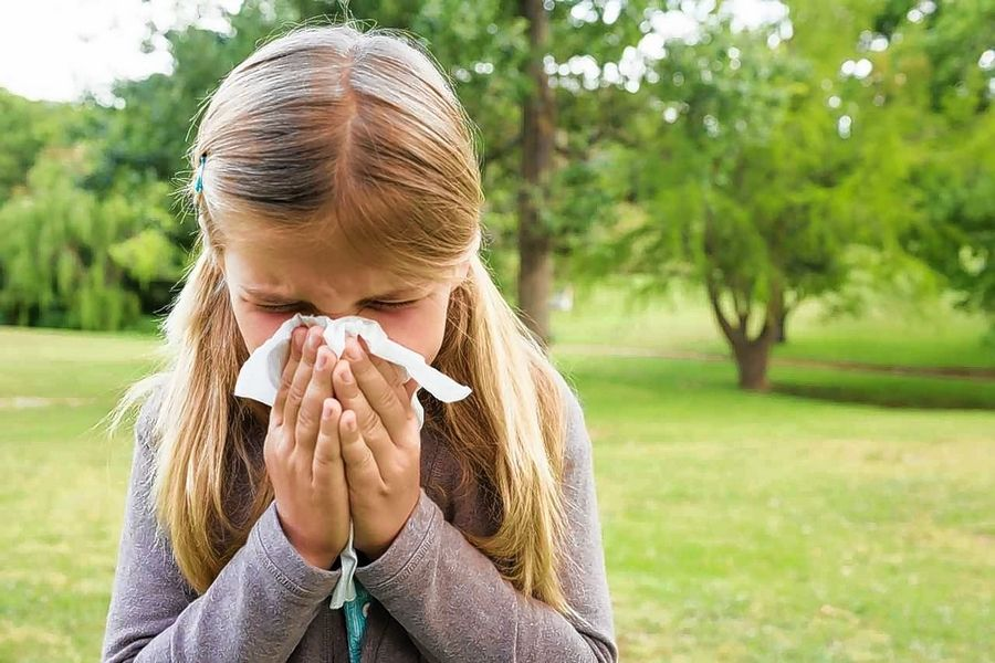 Viruses cause common colds, but seasonal allergies are triggered by the immune system's reaction to allergens like mold spores and pollens.