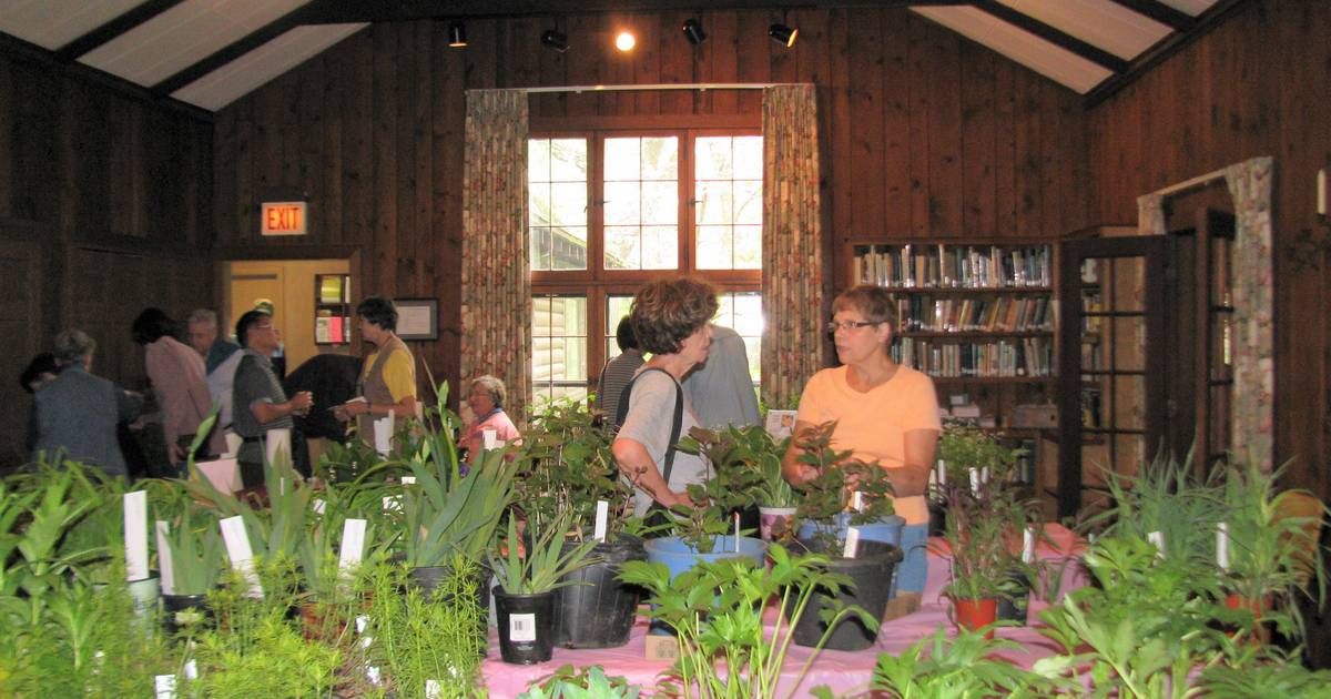 Long grove kildeer garden club a plant sale and more Garden grove breaking news now