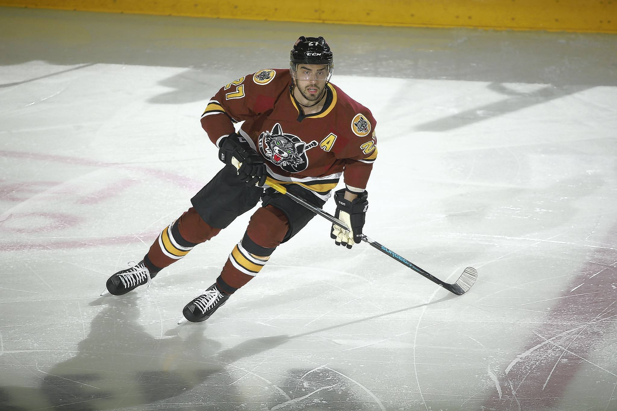 "The Chicago Wolves used a team meeting to help turn their season around after a wretched start. Led by captain Paul Thompson, alternate captains Brandon Pirri (above) and T.J. Tynan, 33-year-old defenseman Jason Garrison and others spoke up and delivered a message that helped turn around the season. ""It wasn't pointing guys out,"" said Pirri, who ended up sharing the team lead with 29 goals."