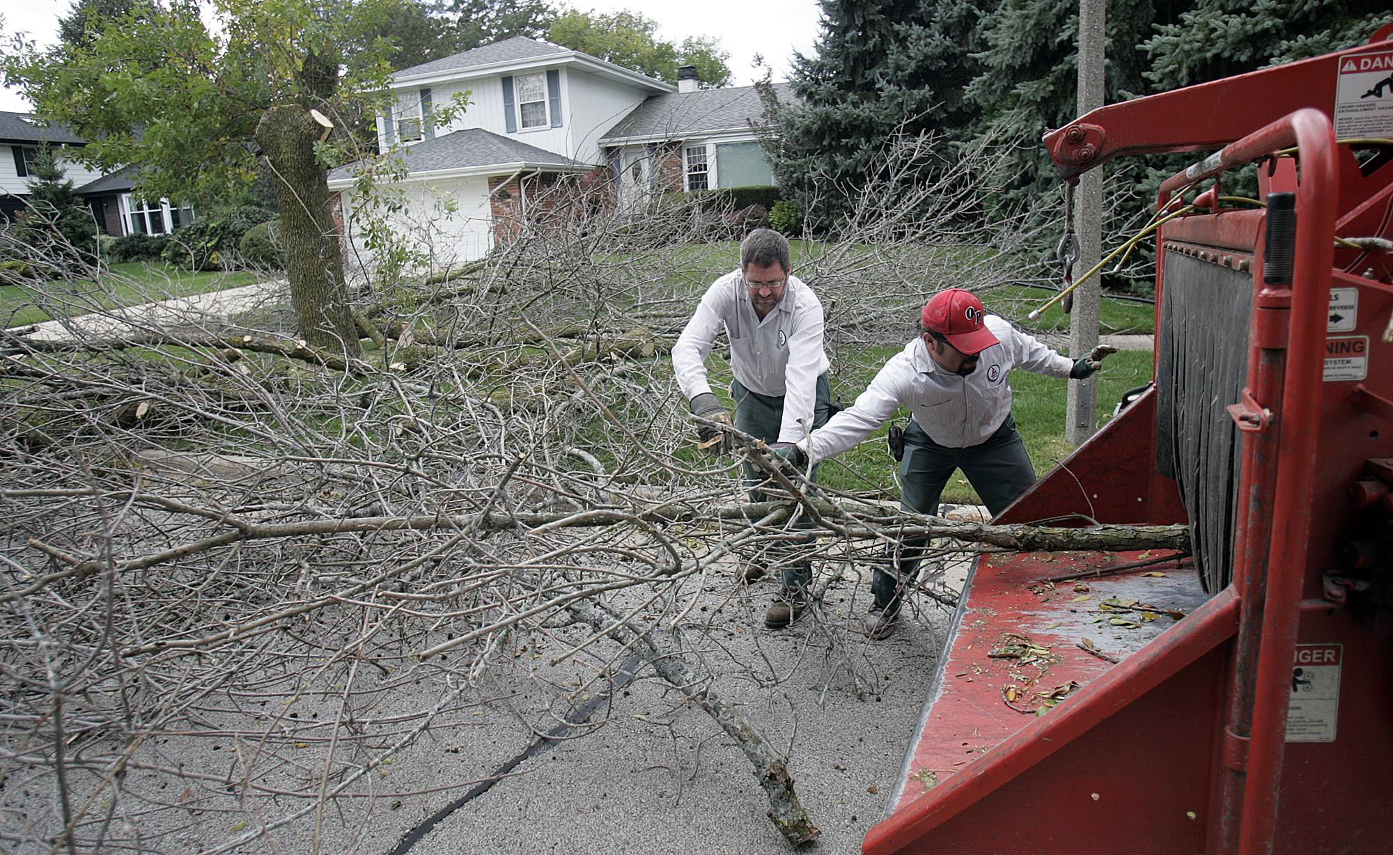 Public works employees cut down trees that have been infected with the emerald ash borer. In Geneva alone, nearly 2,800 trees were killed by the invasive insect. This year, West Dundee will spend $35,000 on its tree replacement program.
