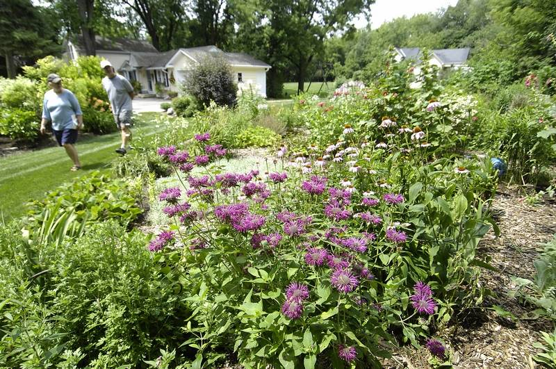 Stone Hill Farm to hold perennial sale and Healing Garden this weekend