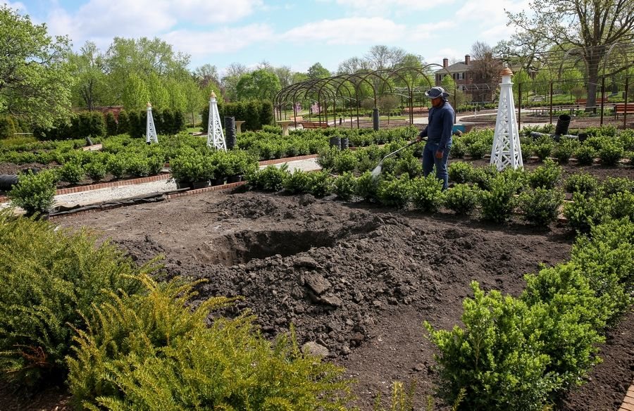 Cantigny Park will open new-look display gardens in July. Boxwoods already have been planted around garden beds.