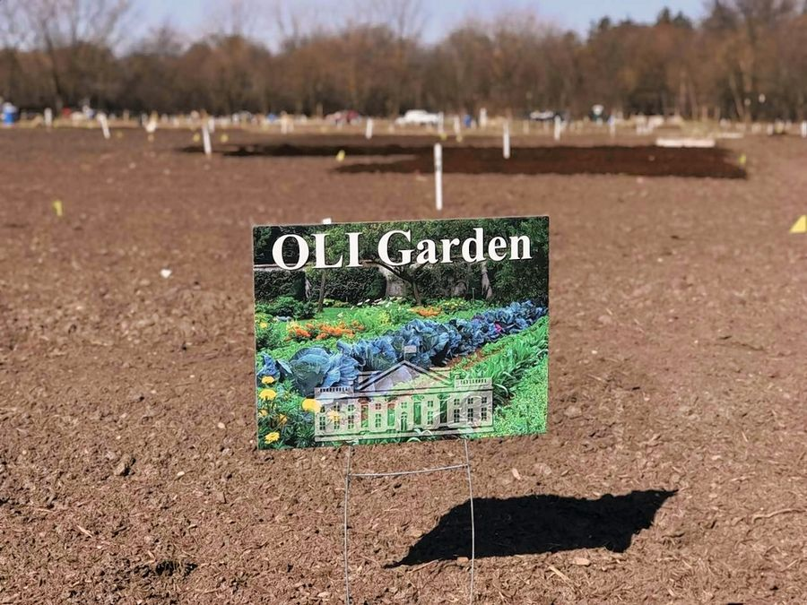 Volunteers with the nonprofit Obama Legacy Foundation plan to plant this OLI Garden on Saturday on two plots at the Ron Ory Community Garden Plots in Naperville. Produce grown here will be donated to the food pantry at the Warren-Sharpe Community Center in Joliet.