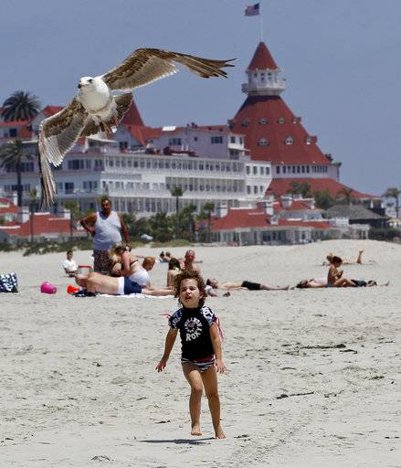 FILE - In this May 22, 2012, file photo, a child chases a sea gull on Coronado Beach in Coronado, Calif. Coronado Beach is No. 9 on the list of best beaches for the summer of 2018 compiled by Stephen Leatherman, also known as Dr. Beach, a professor at Florida International University.