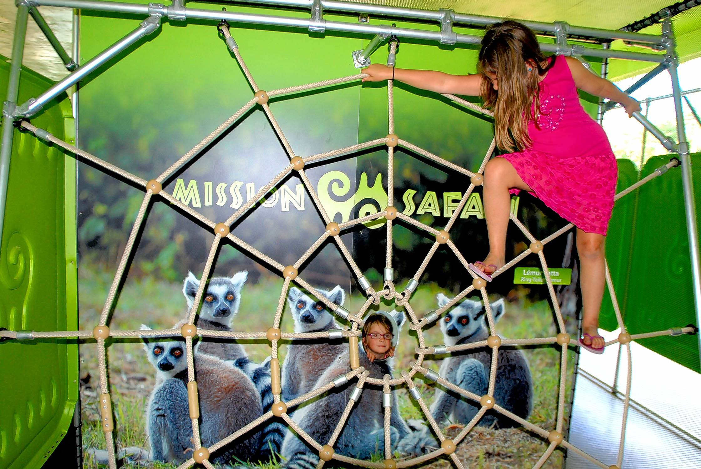 "Kids can climb a spider web as one of the hands-on features in Brookfield Zoo's ""Amazing Arachnids"" exhibit this summer."