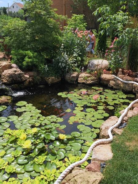 6 suburban garden walks for those with, or without, green thumbs