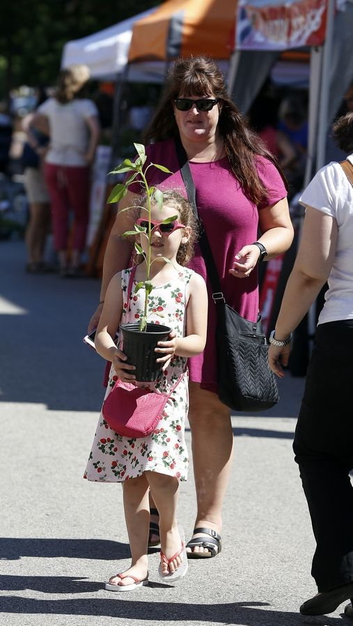 Jenny Seamans of Elgin and her daughter Madelynne, 6, carry a sunflower plant they bought at the Elgin Farmers Market on Friday.