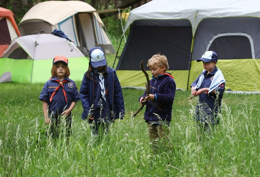 Addison Carver, Lucy Vraniak, Nick Szela and Kate Vraniak look for hiking sticks during a campout with Cub Scouts Pack 229 at Kettle Moraine State Forest in Wisconsin.