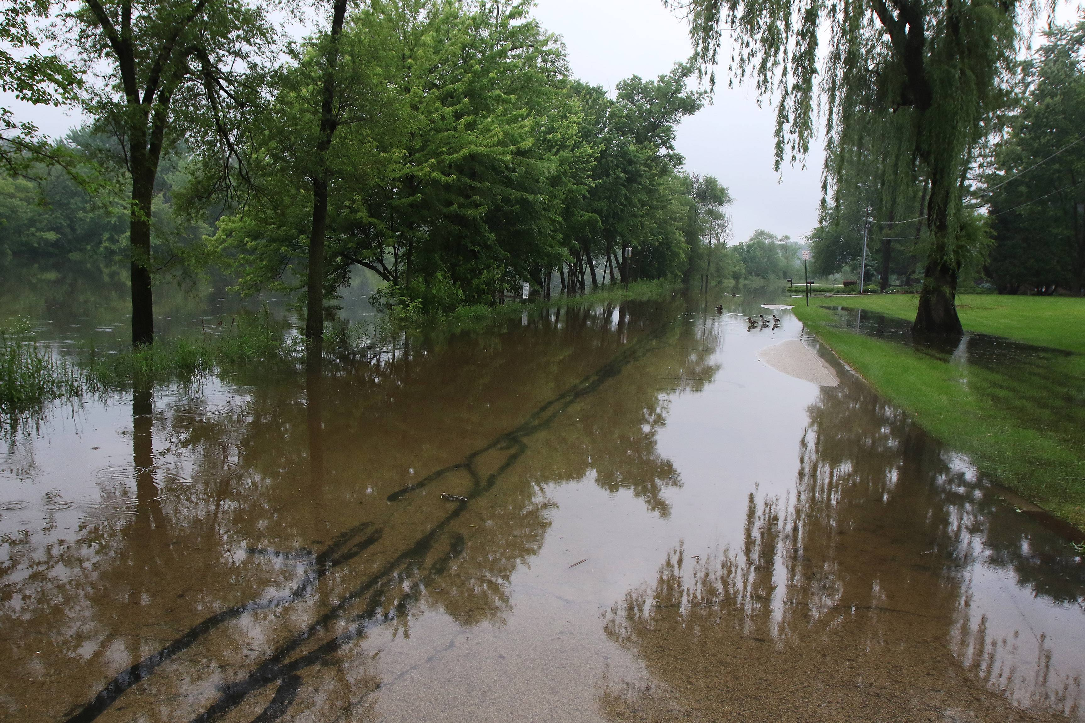 Hillside Avenue was flooded near Willow Road in Prospect Heights on Sunday. Heavy thunderstorms over the weekend closed roads and poured water into basements across the city.