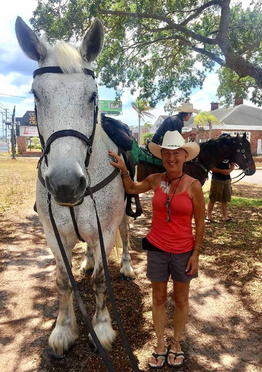 "Barbara Honeyman James of Warrenville had a hand in helping rescue thousands of horses headed for the so-called ""kill lot."""