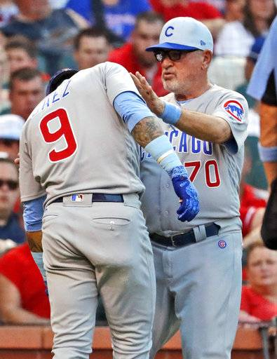 Chicago Cubs' Javier Baez (9) is checked on by manager Joe Maddon after being hit by a pitch during the third inning of a baseball game against the St. Louis Cardinals Sunday, June 17, 2018, in St. Louis. Baez left the game.