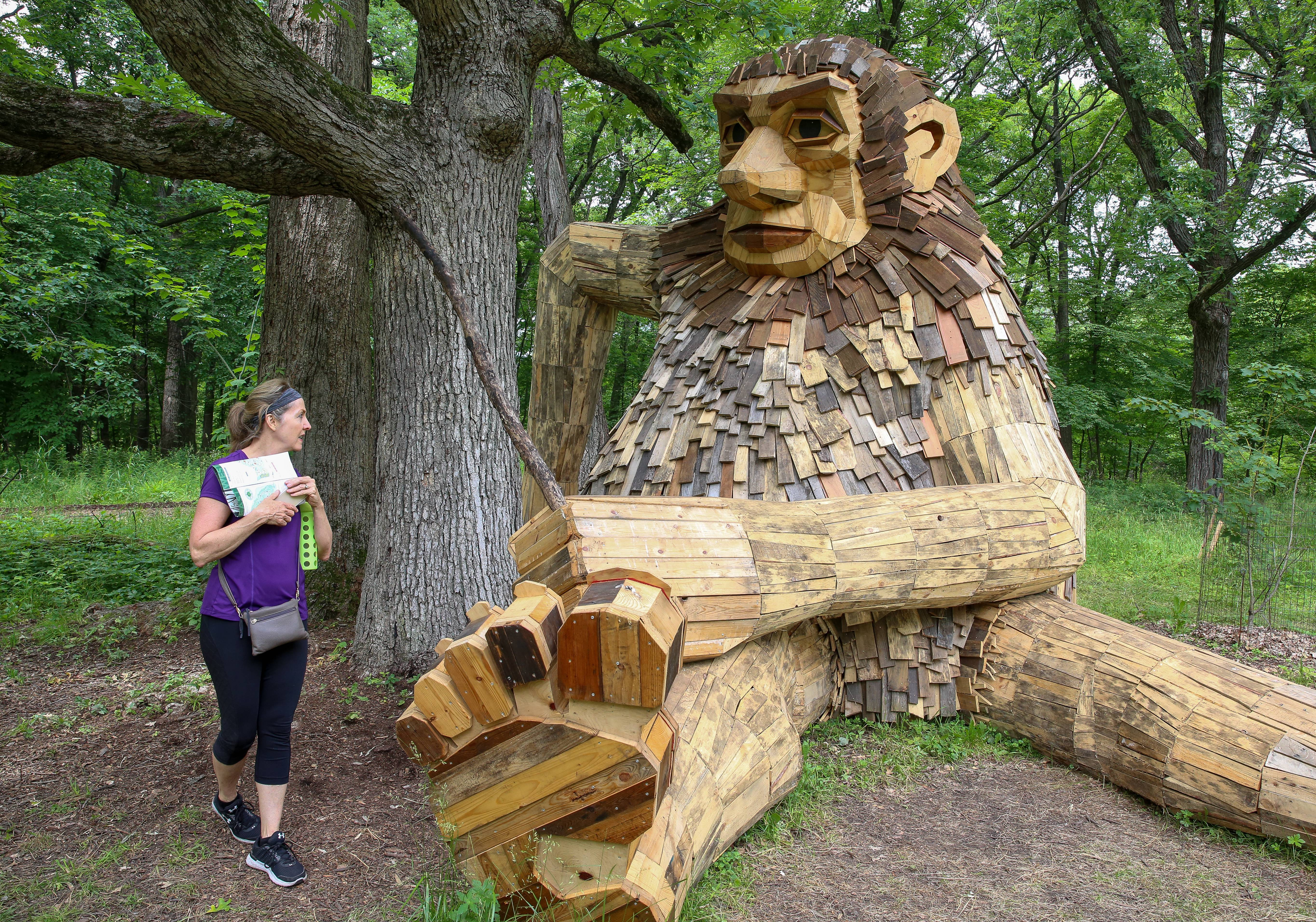 "The ""Troll Hunt"" exhibit by Danish artist Thomas Dambo opens Friday at the Morton Arboretum in Lisle with the official unveiling of six giant wooden sculptures. ""The craftsmanship is extraordinary,"" said Pam Titzer, an arboretum visitor from La Grange."