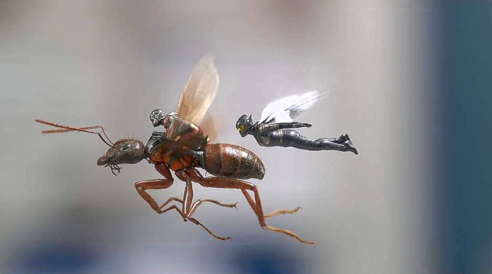 "Ant-Man (Paul Rudd) and the Wasp (Evangeline Lilly) team up once more to rescue a scientist's wife in the smart and funny superhero comedy ""Ant-Man and the Wasp."""