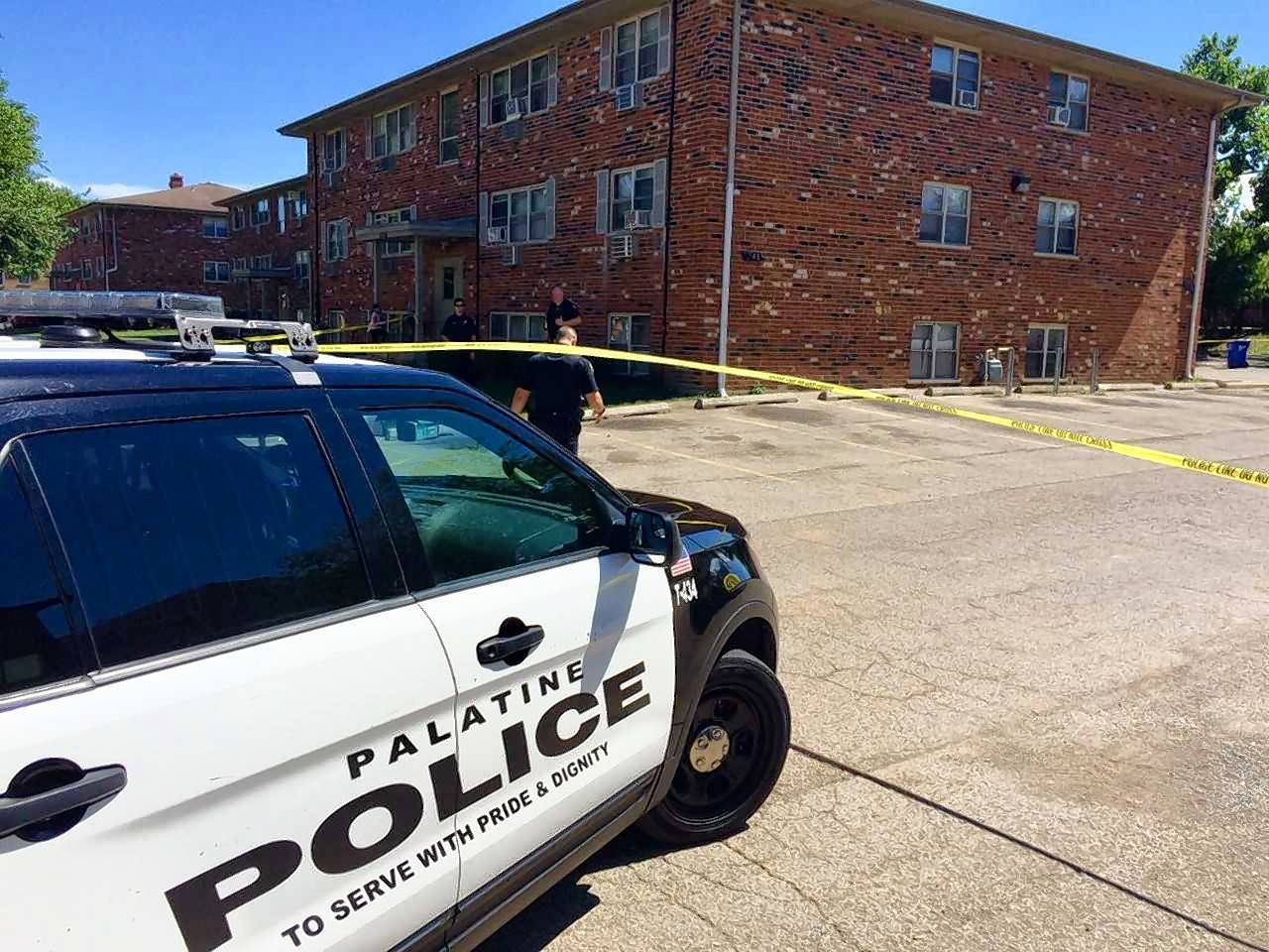 Palatine police are investigating the shooting of a 19-year-old man Tuesday afternoon at an apartment building in the 1700 block of North Rose Avenue. No one is in custody, police said.