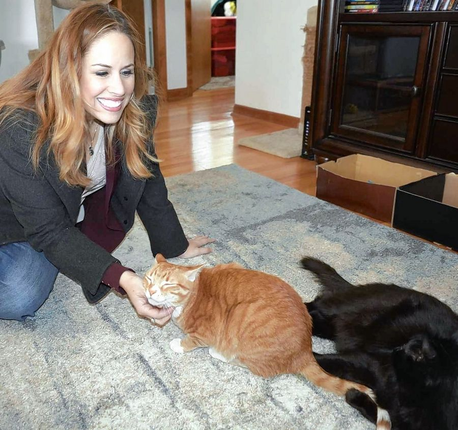 Palatine blogger Lauren Mieli has organized a convention for cat lovers. Meow Meetup Chicago will take place July 21-22 at the Donald E. Stephens Convention Center in Rosemont.