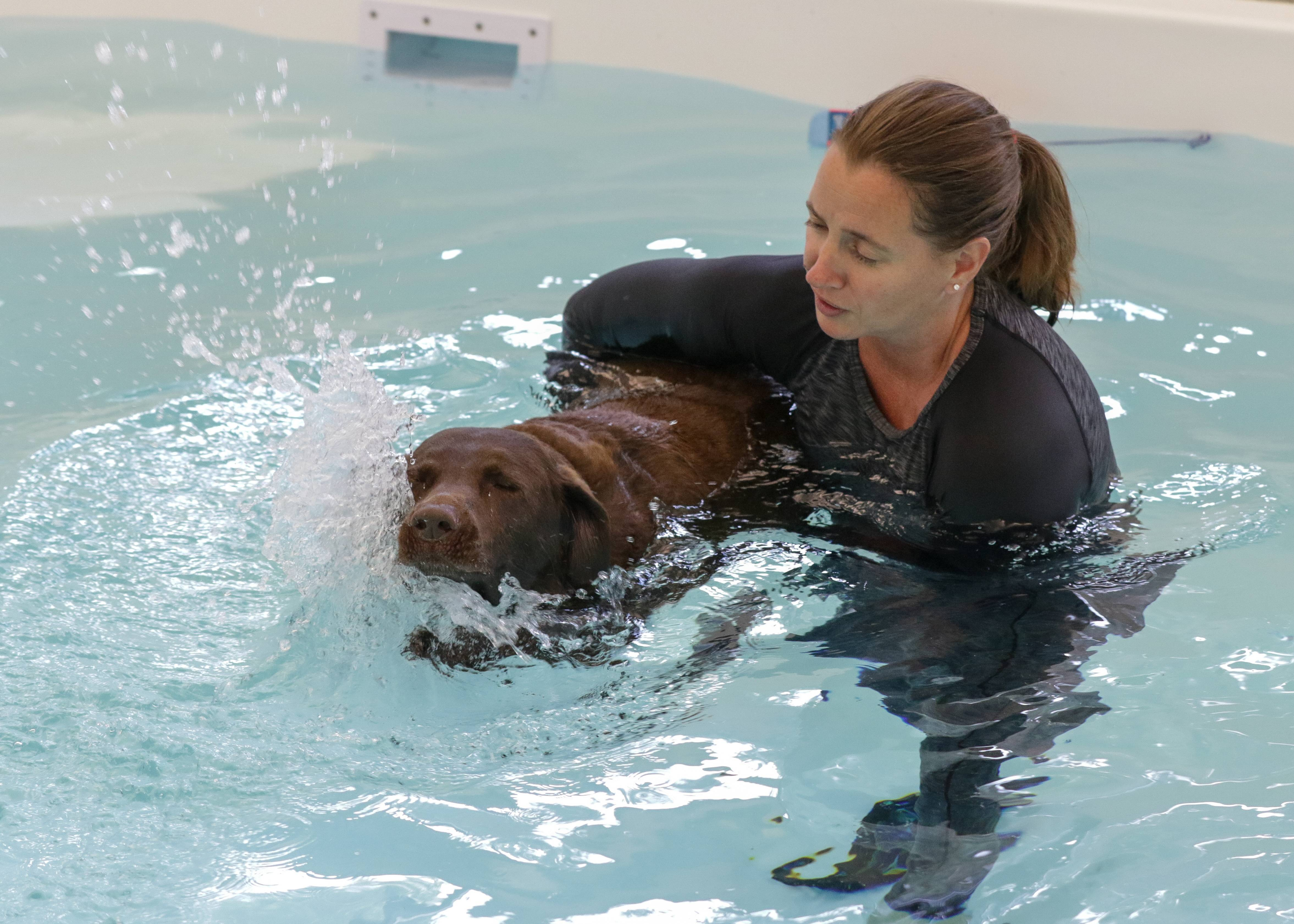 Co-owner Shannon Bergman takes Lucy for a swim at Wag 'N Paddle indoor dog pool and park in Naperville, opening soon.The business is expected to open soon at 1847 W. Jefferson Ave.