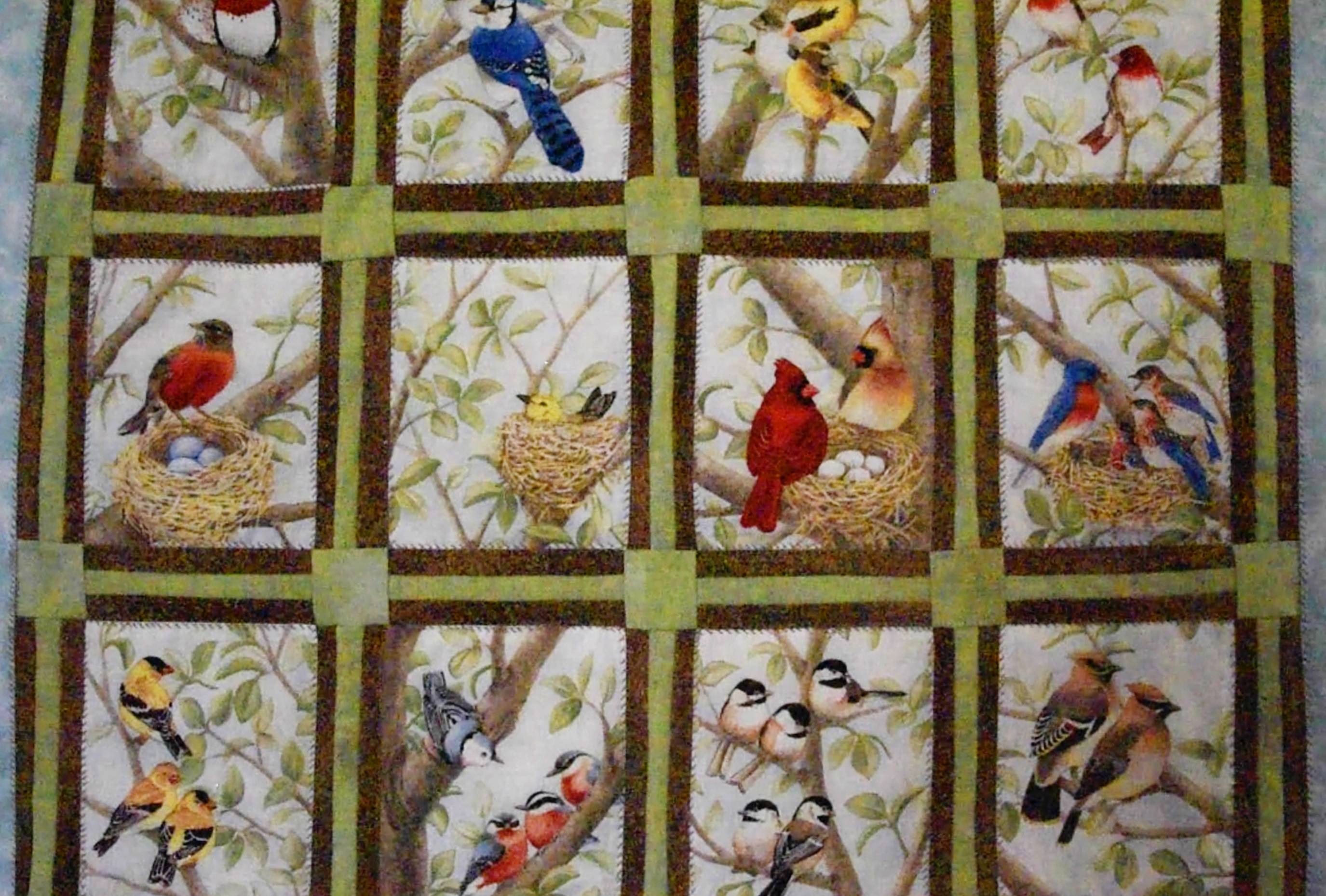 A prized possession of former Kane County Audubon President Bob Montgomery is a quilt made by his late wife, Sharron. His East Dundee home is filled with images and sculptures of birds.