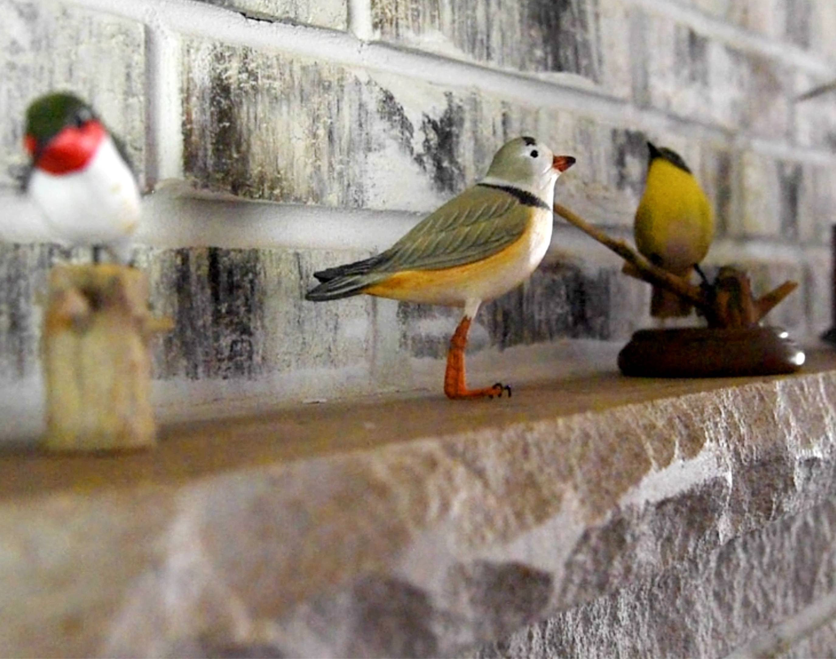 The East Dundee home of Bob Montgomery features a collection of wood carvings depicting small birds and larger waterfowl. His backyard is home to at least 20 species of live birds.