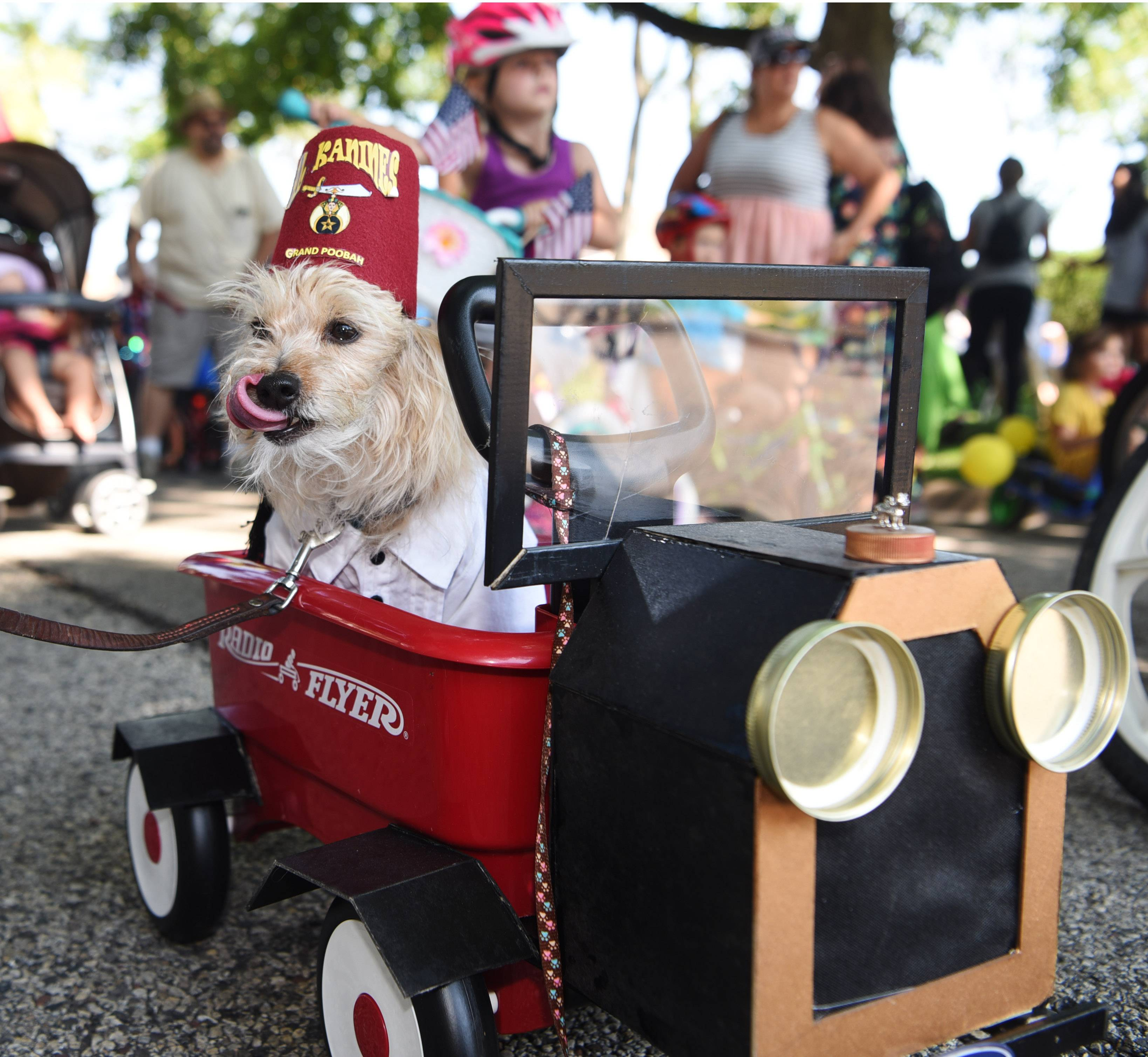 One Of The Highlights Of Grayslakes Summer Days Festival The Bike And Pet Parade Will