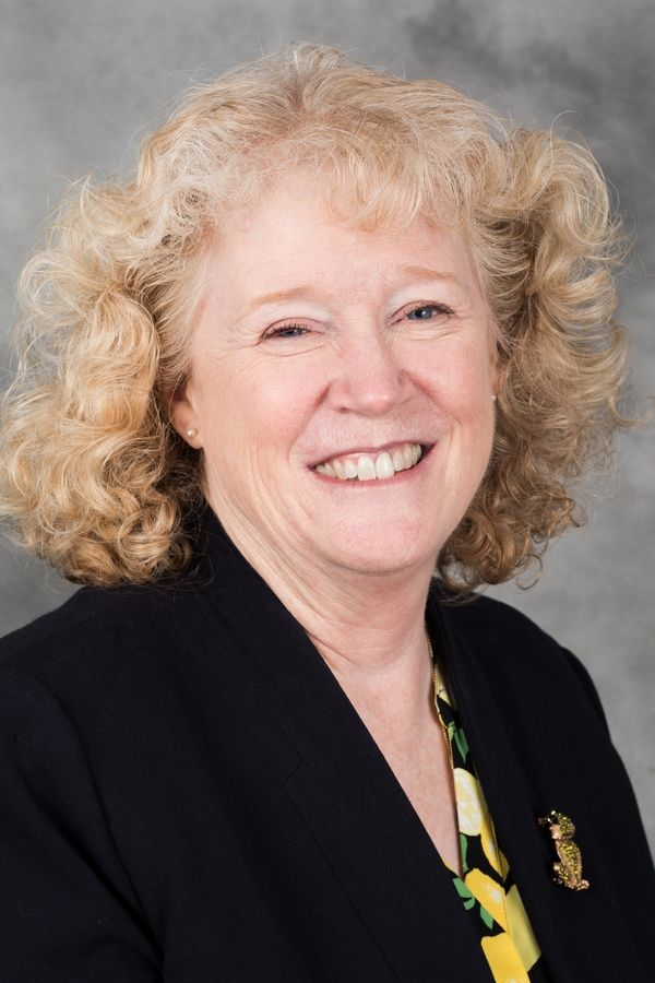 The College of Lake County has named Sue Fay as executive director of human resources.
