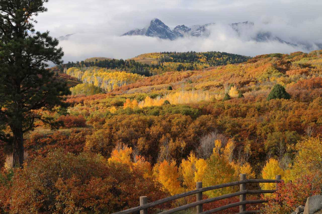 A photo of the north edge of the Sangre de Cristo mountain range captures fall colors last September in an area just west of the town of Ridgway, CO.