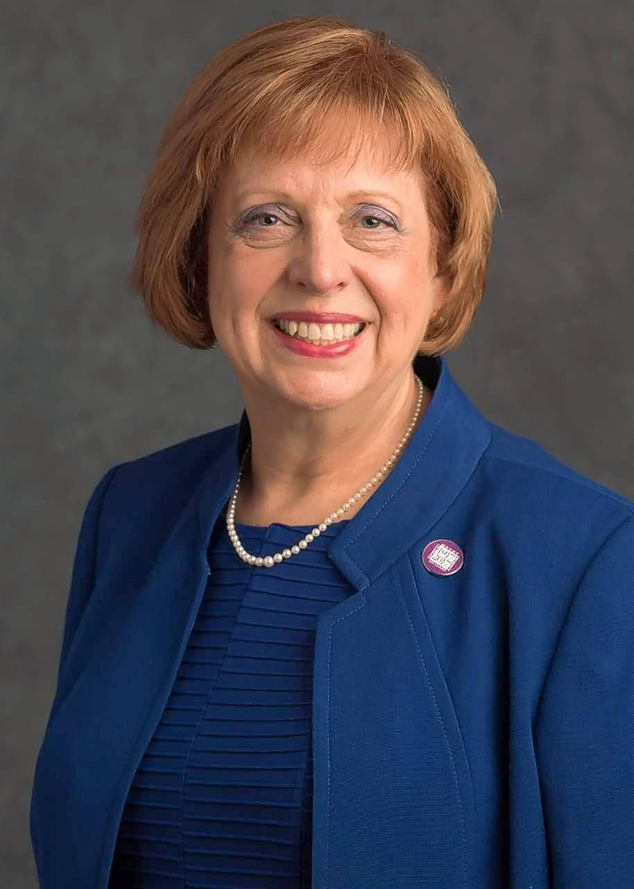 Mount Prospect Mayor Arlene Juracek is among the village leaders who say holding the property tax levy flat next year is worth considering.