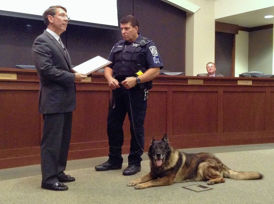Arlington Heights Mayor Tom Hayes, left, reads from a proclamation Tuesday honoring retiring police dog Max, who worked for eight years with officer Michael Butler.