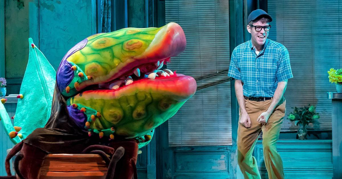 Theater review: Drury Lane's well-cast 'Little Shop of