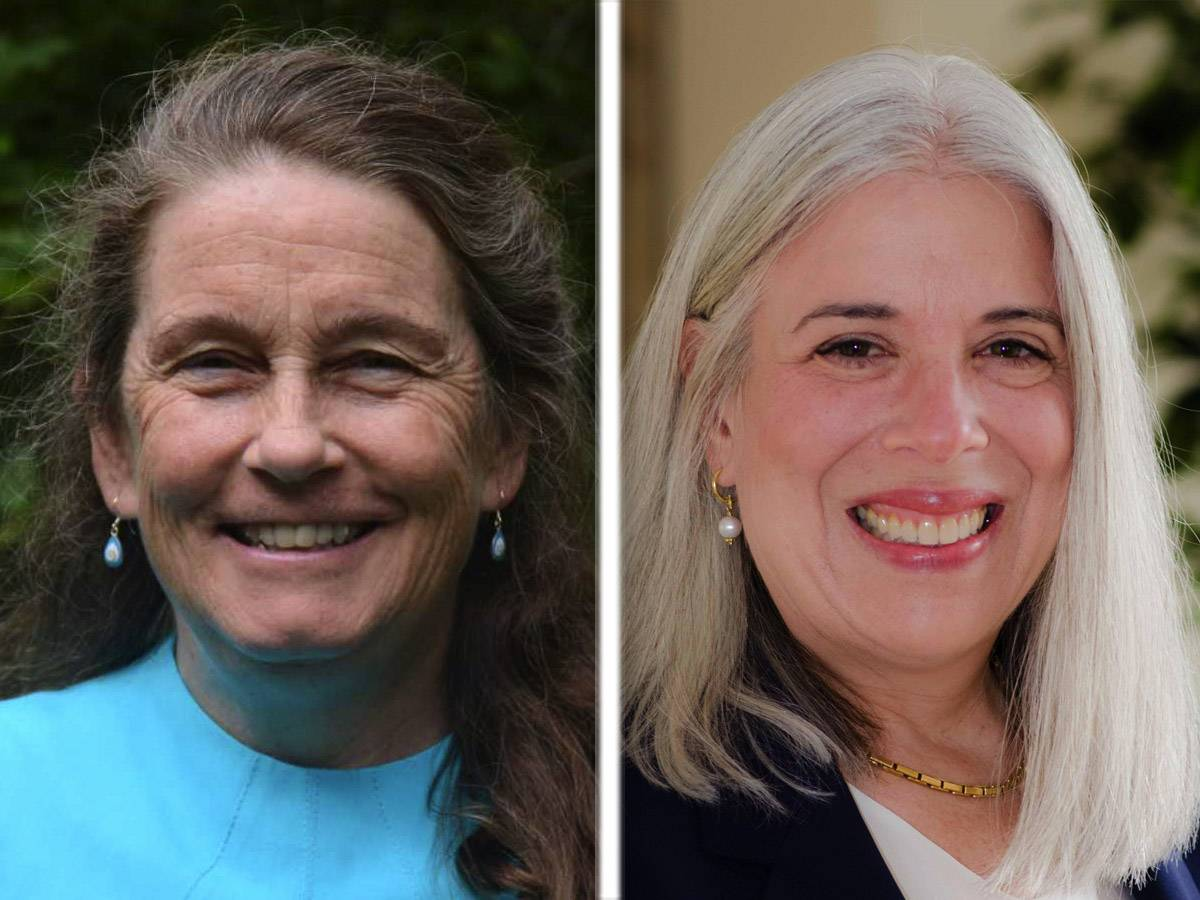 Republican incumbent Ann Maine, left, and Democrat Susan Malter are candidates for the Lake County Board's 21st District seat.