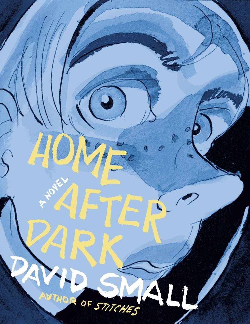 """Home After Dark,"" by David Small"