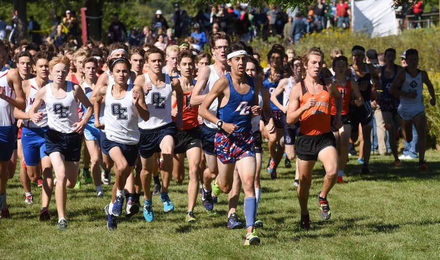 Competitors in the varsity boys race including Dundee Crown's Adam Swanson, wearing headband, middle, run shortly after the start during the Palatine Cross Country Invitational at Deer Grove East Forest Preserve in Palatine Saturday.