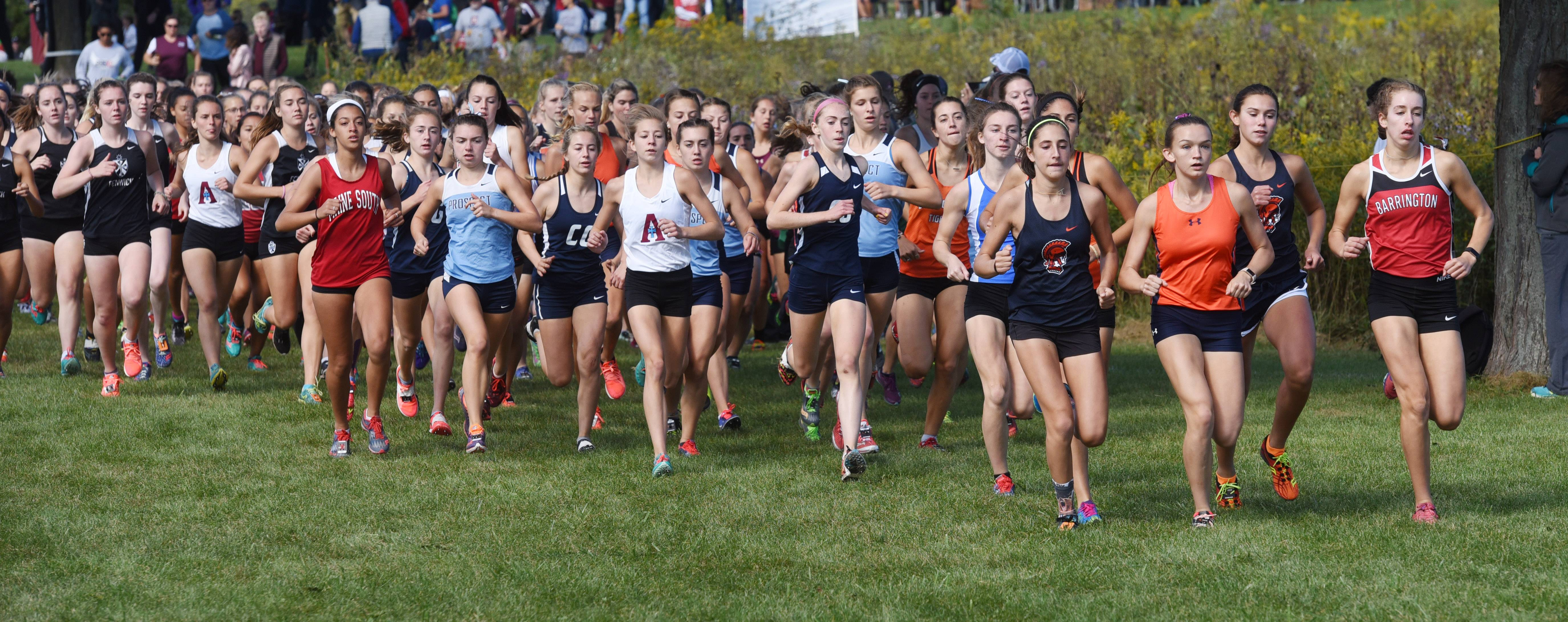 Competitors in the varsity girls race are closely bunched shortly after the start during the Palatine Cross Country Invitational at Deer Grove East Forest Preserve in Palatine Saturday.