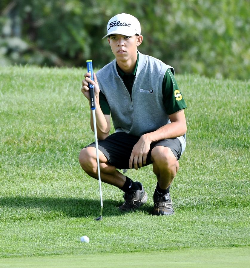 Stevenson's Jackson Bussell putts from the edge of the green at the North Suburban Conference boys golf tournament at Willow Glen Golf Club in North Chicago Tuesday.