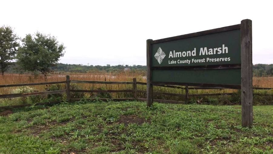 Almond Marsh entrance off Almond Road just south of Route 120.