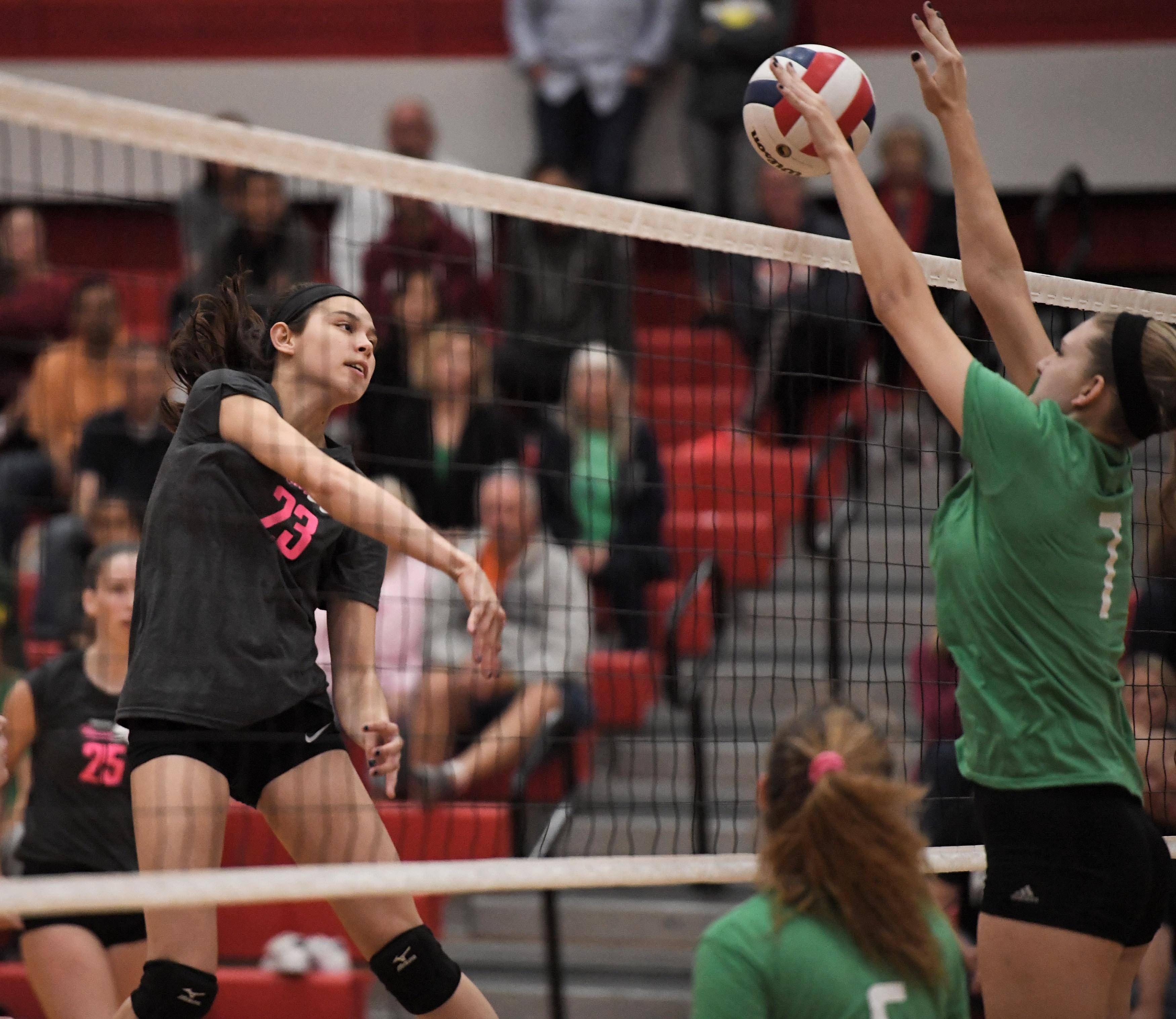 Palatine's Sarah Elischer hits into the defense of Fremd's Jules Tangney Thursday in a girls volleyball match at Palatine High School.