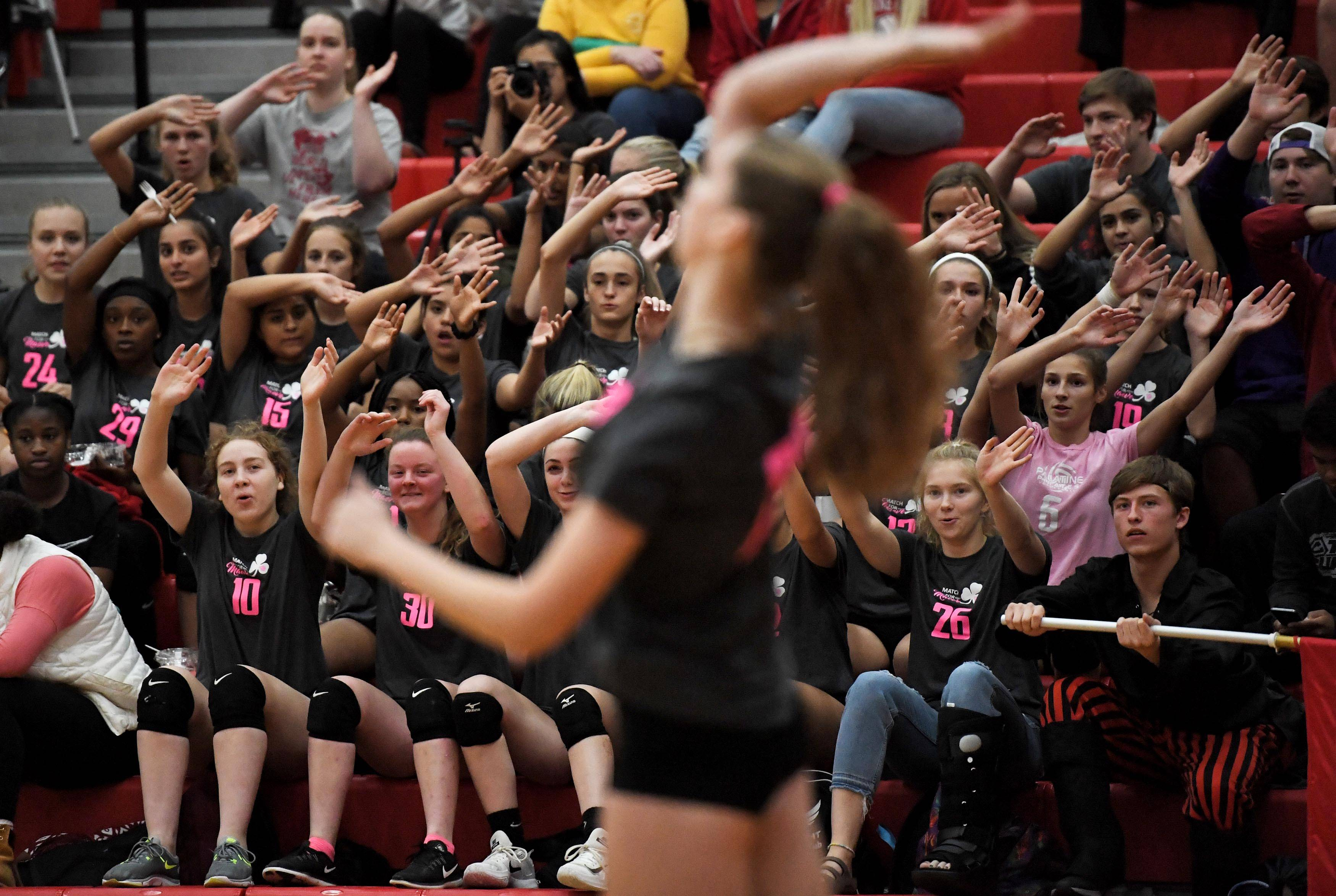 The home crowd supports Palatine's Emily Campe as she serves against Fremd Thursday in a girls volleyball match at Palatine High School.
