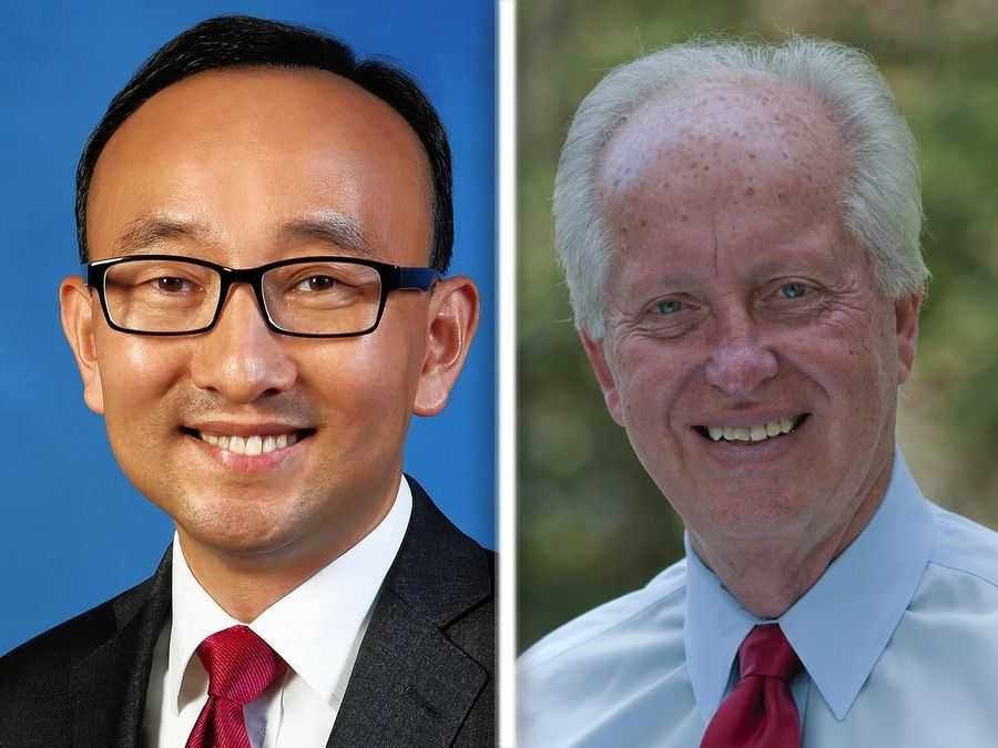 Soojae Lee, left, and Terry Link are vying for the Illinois Senate District 30 seat.