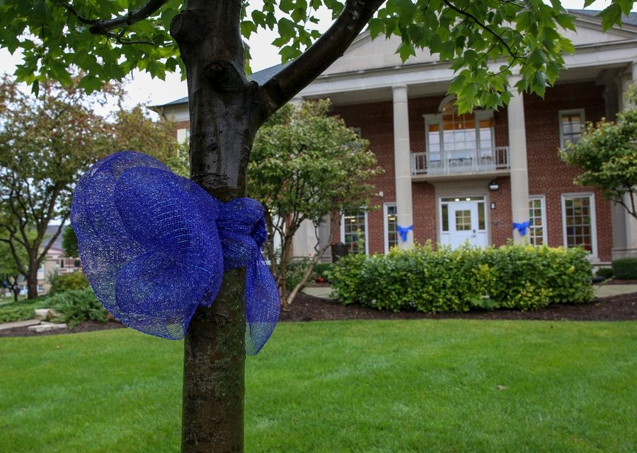 A 7-year-old Glen Ellyn boy, a second-grader at St. Petronille Catholic School, died last Tuesday after an accident at My Gym in Wheaton. Blue ribbons around town are a show of support for his family.