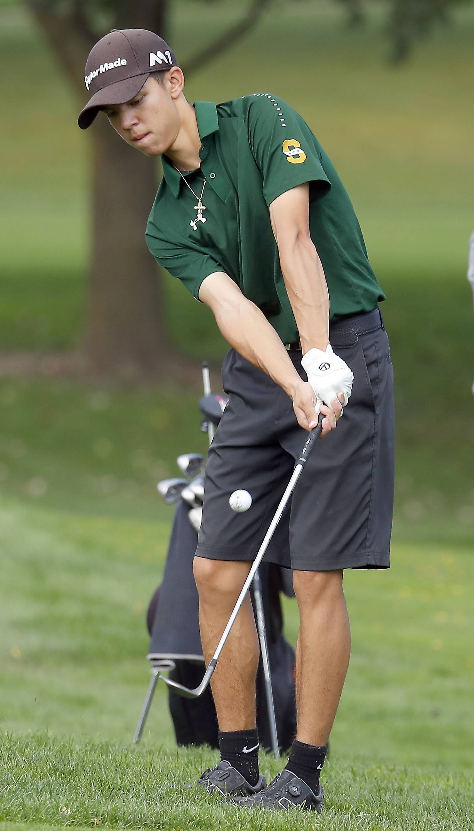 Stevenson's Jackson Bussell Tuesday during boys sectional golf at Palatine Hills